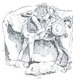 dromedarii-2.jpg